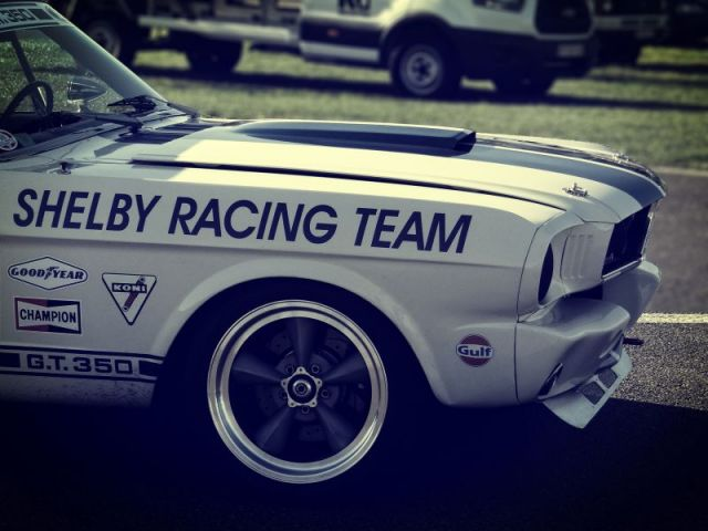 SCCT Mustang shelby.jpg
