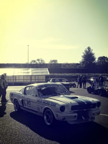 SCCT Mustang shelby bis.jpg